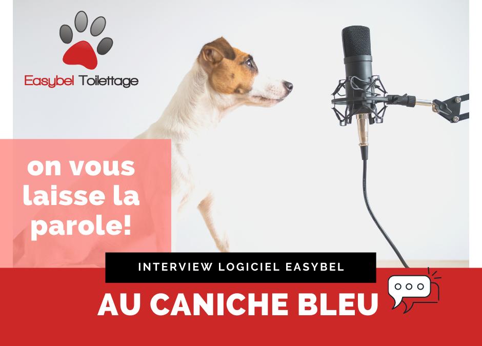 Easybel Toilettage , Interview Au caniche bleu